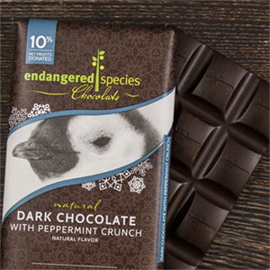 Dark Chocolate with Peppermint Crunch