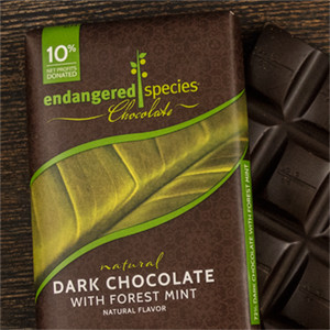 Dark Chocolate with Forest Mint