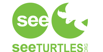 See Trutle