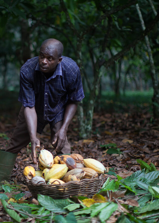 Fairtrade Farmers